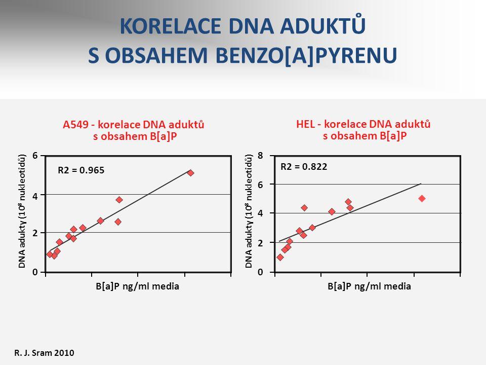 KORELACE DNA ADUKTŮ S OBSAHEM BENZO[A]PYRENU